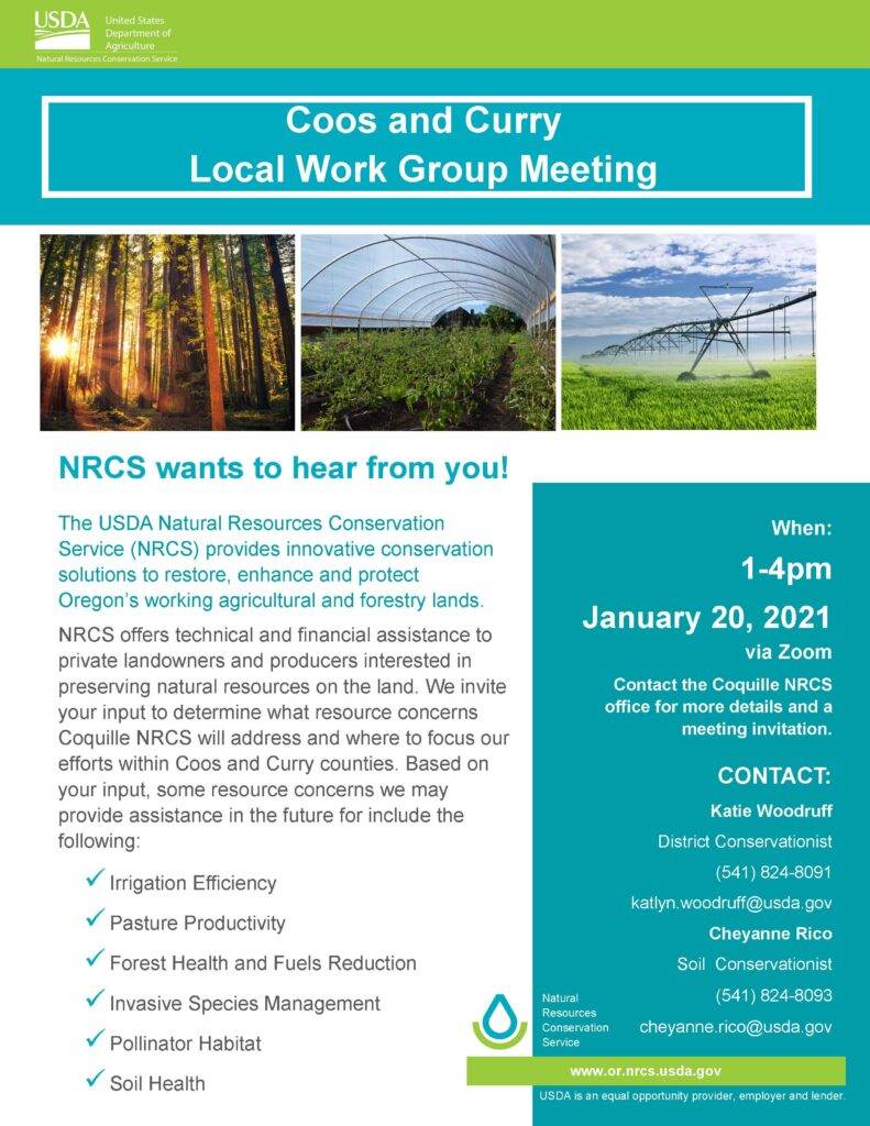 Local Work Group Meeting Flyer 1